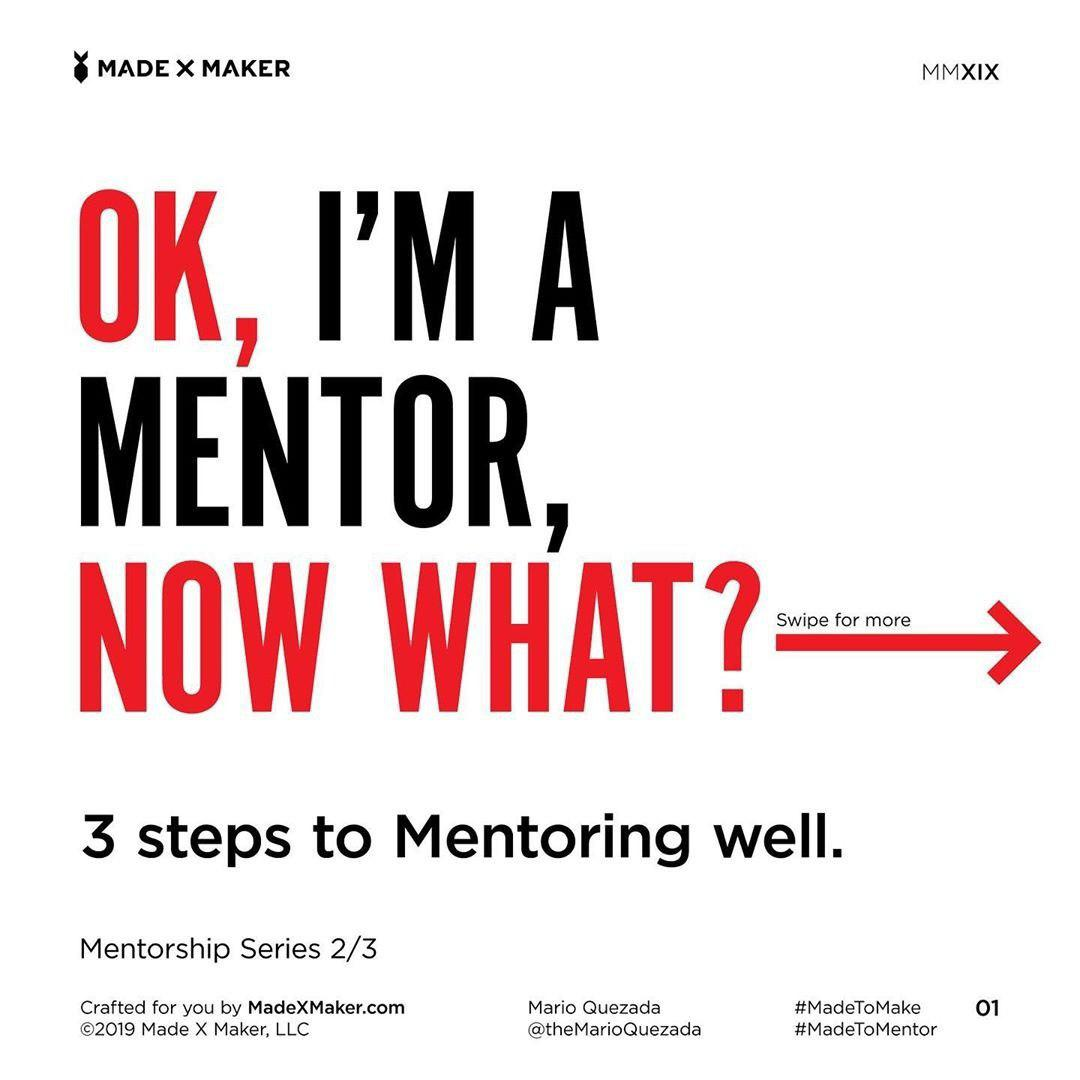 Ok, I'm a Mentor. Now What?