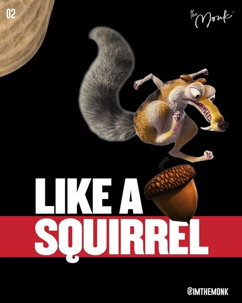 Like a squirrel