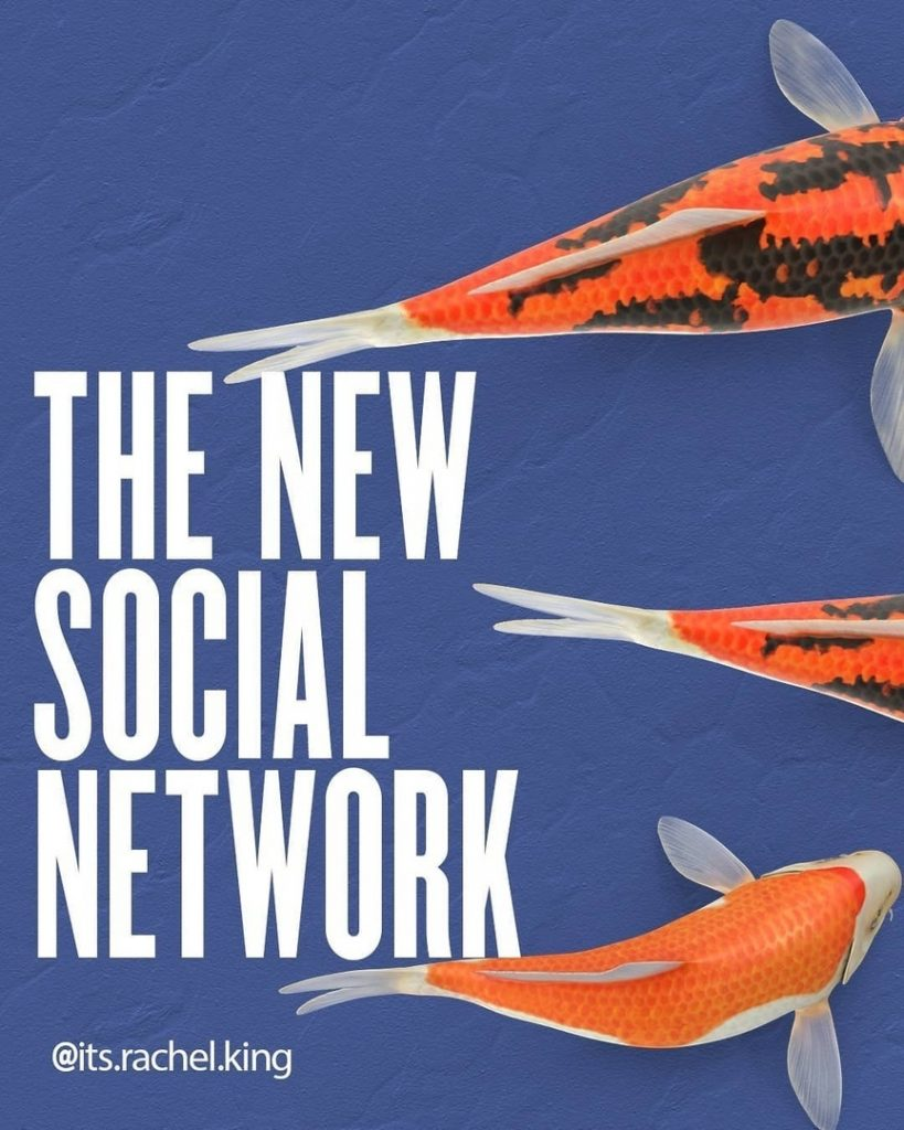 The new social network